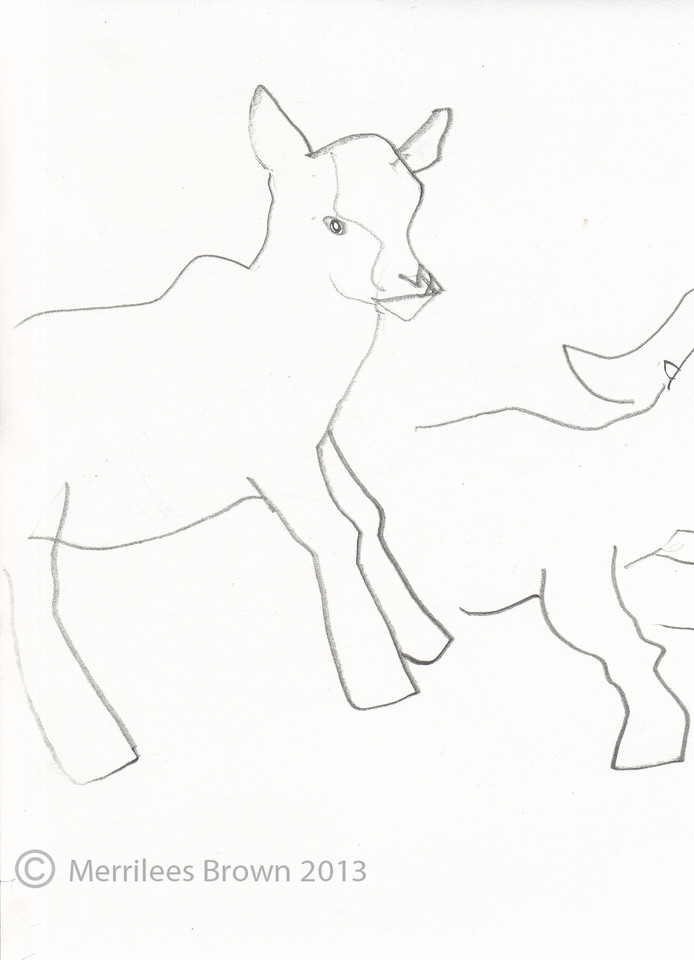 Goats in Pencil
